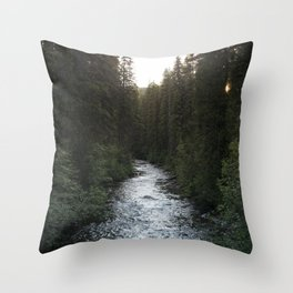 A Forest Path Throw Pillow