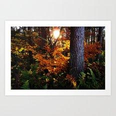Autumn (in Scotland) Art Print