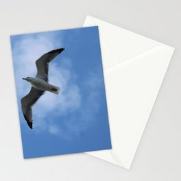 Shadow of a bird Stationery Cards