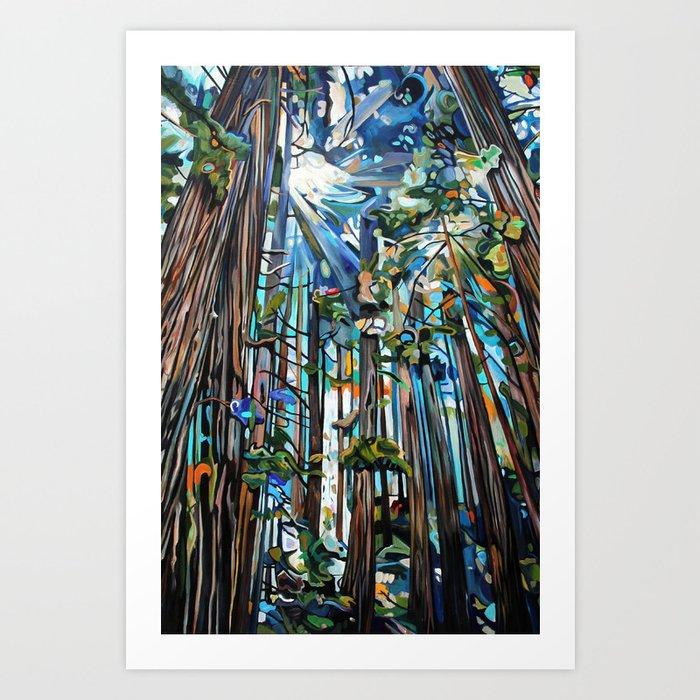 Golden Cedars Art Print