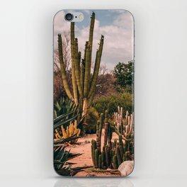 Cactus_0012 iPhone Skin