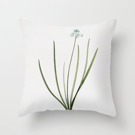 Vintage Spring Squill Illustration Throw Pillow