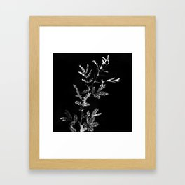 Meshes of the afternoon Framed Art Print