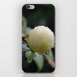 DewyTomatos iPhone Skin