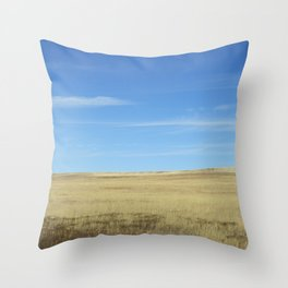 Colorado, 2 Throw Pillow