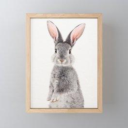 Baby Rabbit, Baby Animals Art Print By Synplus Framed Mini Art Print
