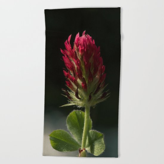 Red Clover Beach Towel