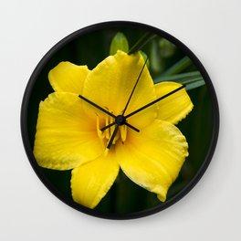 Yellow Daylily Flower Wall Clock