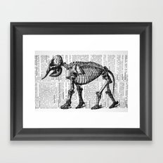 Elephant Skeleton Framed Art Print
