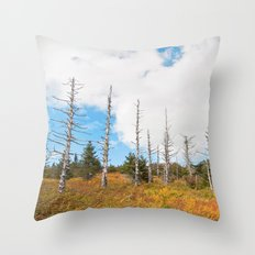 Trees in Mt. Rogers, Virginia Throw Pillow