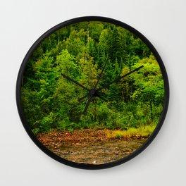 495nm riparian zone Wall Clock
