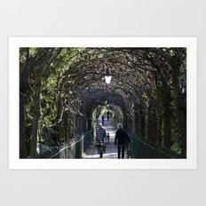 St Andrews Walk Art Print