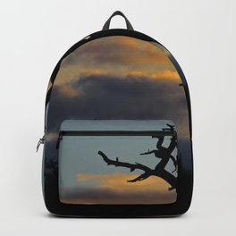 Evening Backpack
