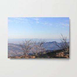 Paysage-F18 Metal Print