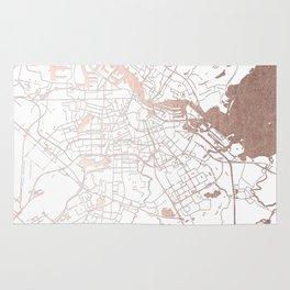 Amsterdam White on Rosegold Street Map Rug