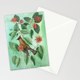 Bohemian Waxwing with Carolina Allspice, Antique Natural History Collage Stationery Cards