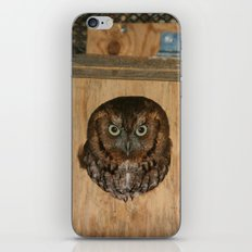 Hibou means owl iPhone & iPod Skin