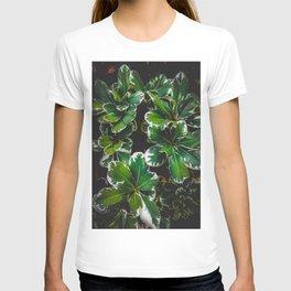 closeup green leaves plant garden texture background T-shirt