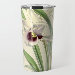 Cochleanthes discolor Orchid 1855 Travel Mug