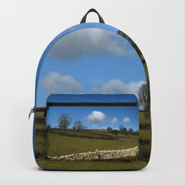 A Winter Wall Backpack