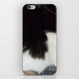 Kitten paws iPhone Skin