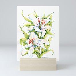 White Stargazer Lily Mini Art Print