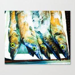 Fish - Chinatown NYC Canvas Print
