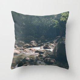 Rocky Brook from Sabbaday Falls Throw Pillow