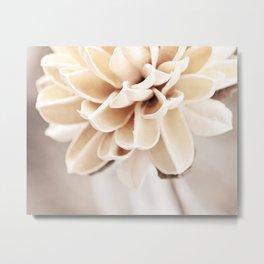 Cream Beige Flower Photography, Light Brown Pale Neutral Nature, Floral Botanical Metal Print