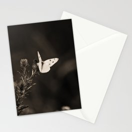 Rested Wings Stationery Cards