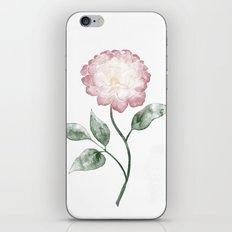Pfingstrose | Peony iPhone & iPod Skin