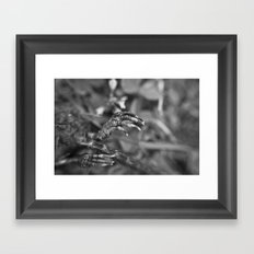 Decay Framed Art Print