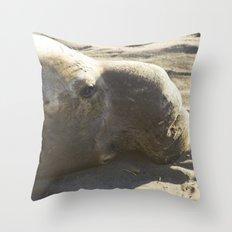 Elephant Seal: Contemplation Throw Pillow
