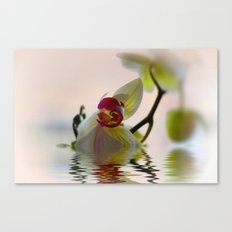 Orchid Reflection Canvas Print