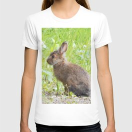 wild rabbit T-shirt