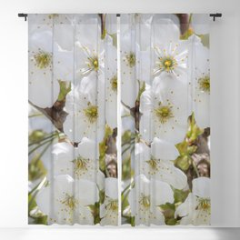 Tiny White Flowers Blackout Curtain