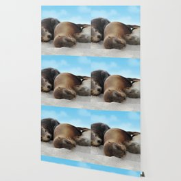 Sea lions family sleeping together on beach Wallpaper