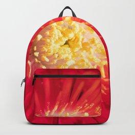 Sparks Fly Backpack