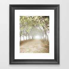 Creation Framed Art Print
