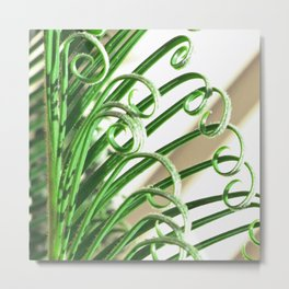 Cycad Metal Print