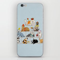 Cats Pyramid iPhone & iPod Skin