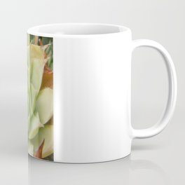 Hens and Chicks Plant Coffee Mug