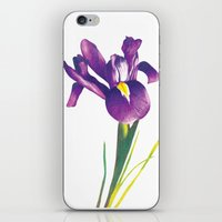 iris iPhone & iPod Skins featuring Iris by Matt McVeigh