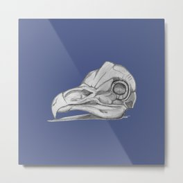 Barn Owl Skull Muted French Blue Metal Print