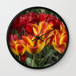Tulip Vibrance Wall Clock