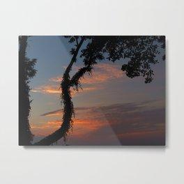 Evening Sun Metal Print