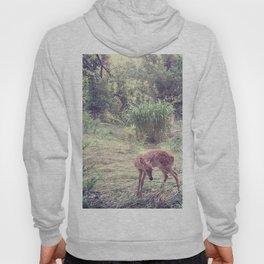 Doe A Deer Hoody