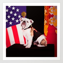 Bulldog Navy Official Mascot Dog Art Print