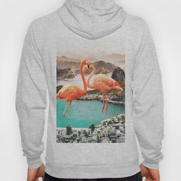 Collage, Flamingo, City, Creative, Nature, Modern, Trendy, Wall art Hoody