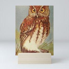 Vintage Print - Screech Owl Mini Art Print
